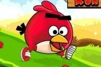 Carrera Angry Birds